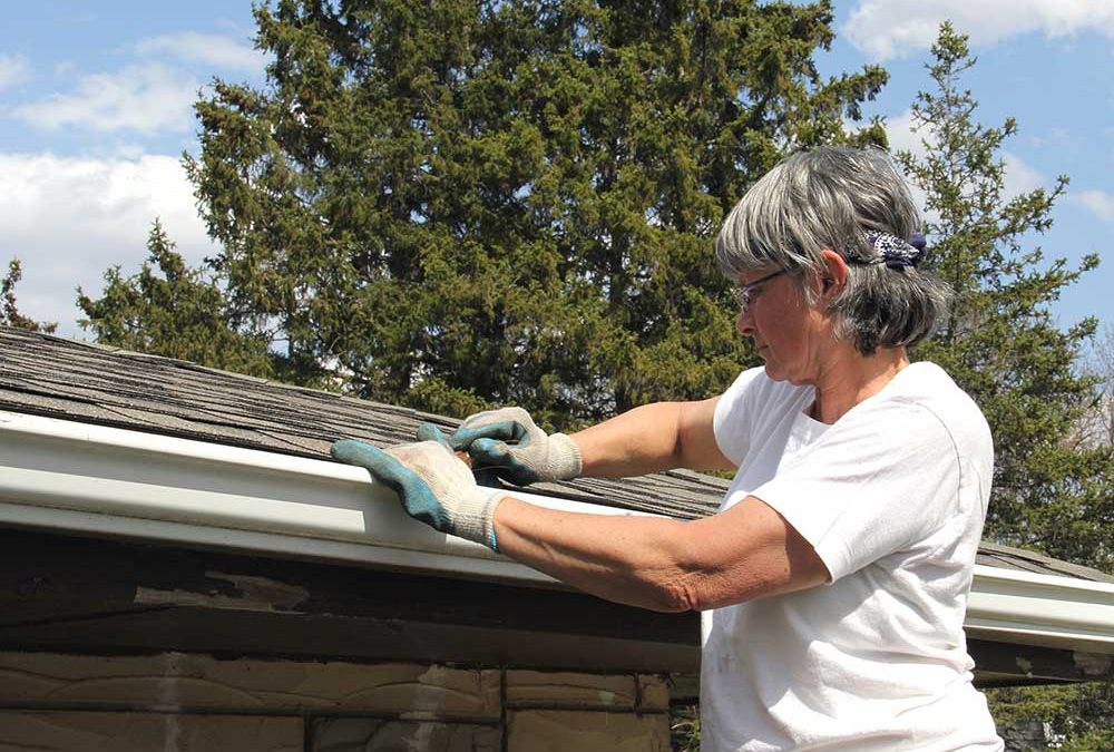 A Woman's View on Professional Pest Control Services