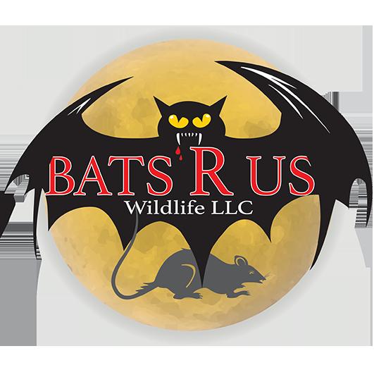 BATS R US LLC loves to blog