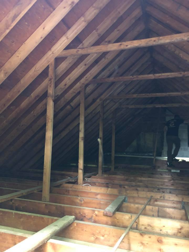 Nothing like a completely cleaned and decontaminated attic and fresh scents throughout.