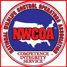 BATS R US IS National Wildlife Control  Operators Association Member